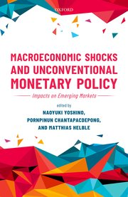 Macroeconomic shocks and unconventional monetary policy. 9780198838104