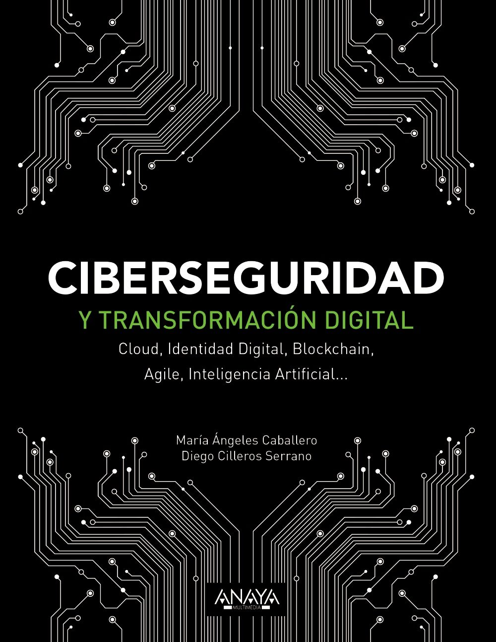 Ciberseguridad y transformación digital. 9788441541627