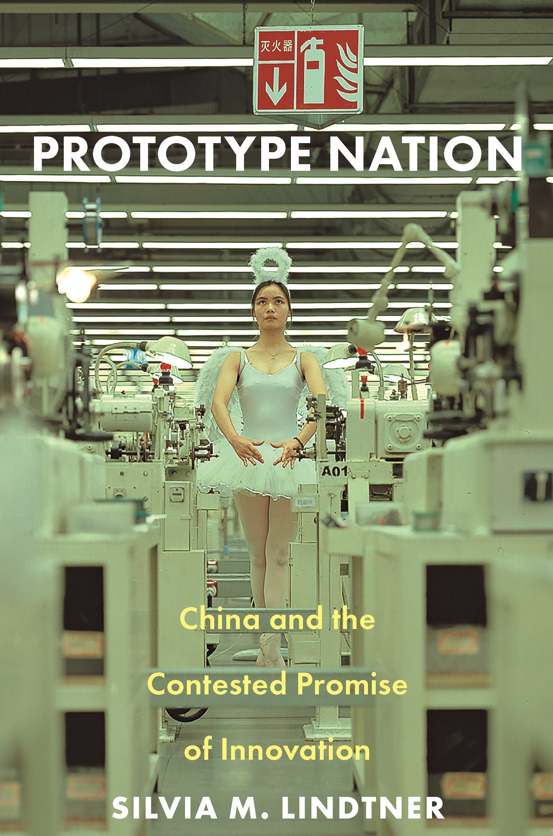 Prototype nation. 9780691207674